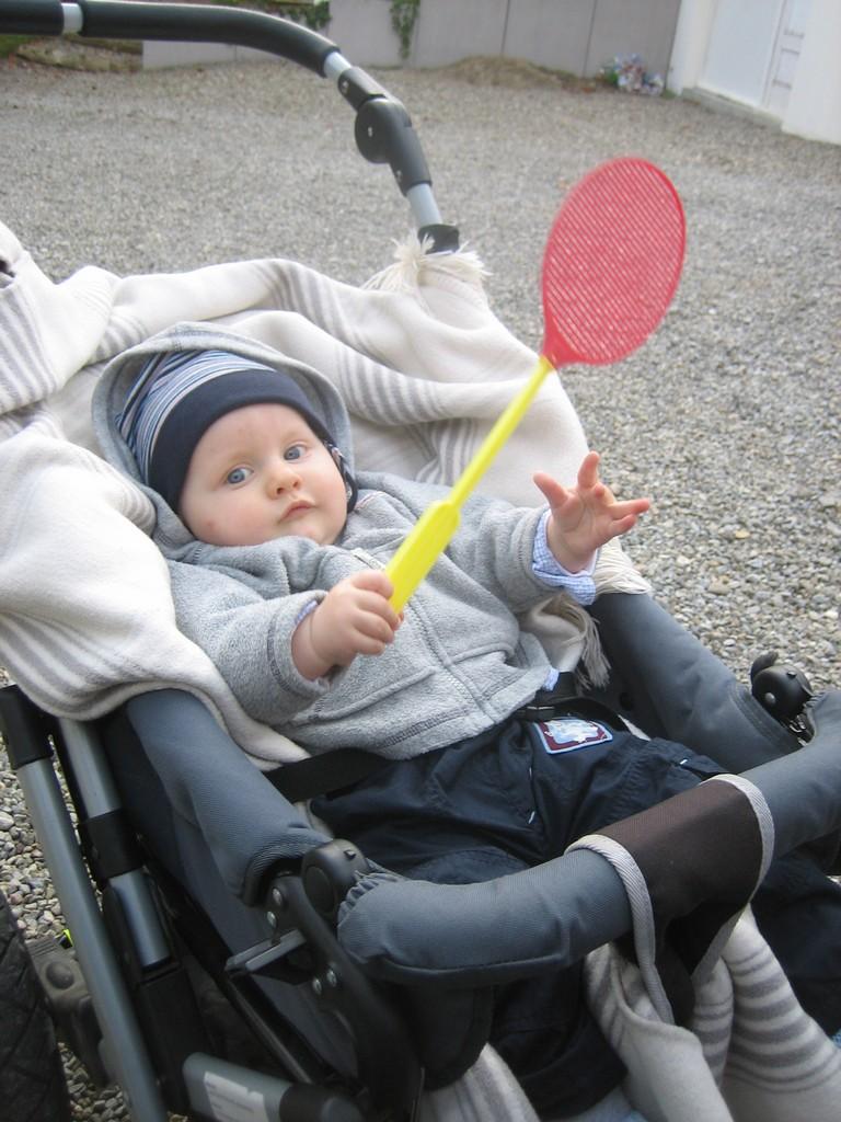 Max der Tennisspieler