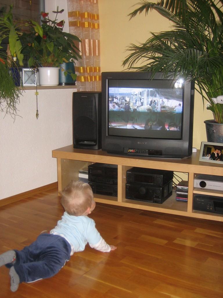 Fernseh-Maxe