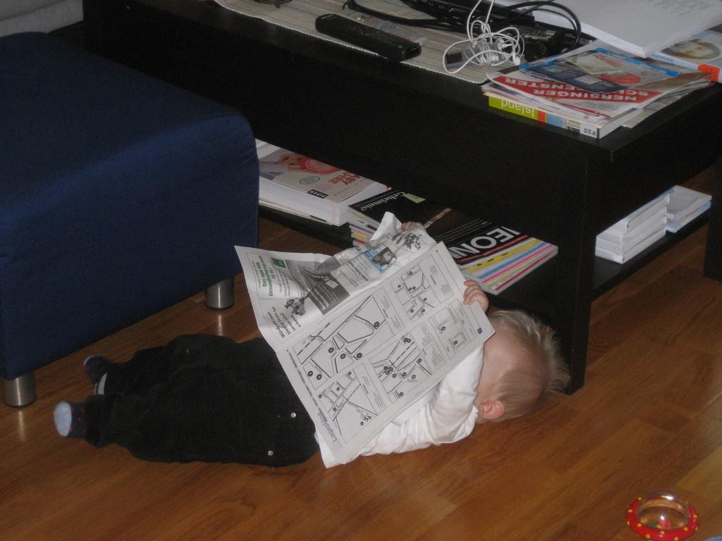 Max die Zeitungsente